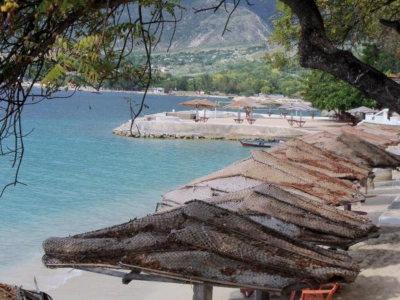 2012 Haiti Trip 041